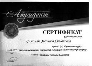 сертификат-Элеонора-5